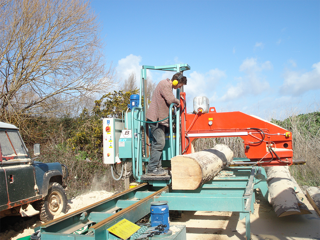 Breaking down logs from the forest with a horizontal band saw
